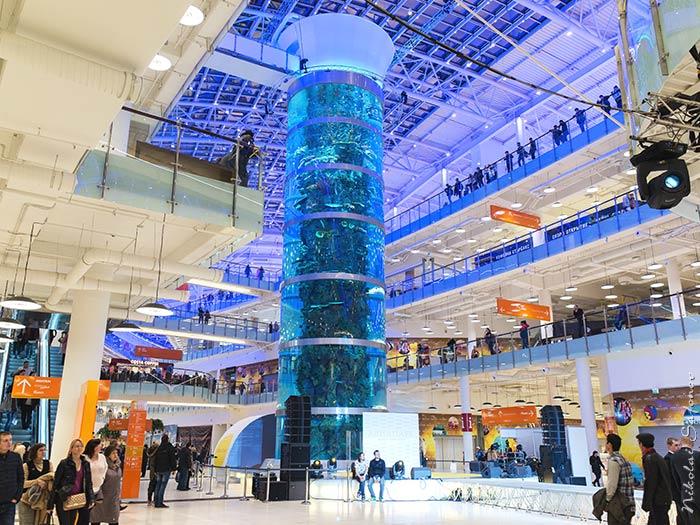 Но нигде нет такого высокого (23 метра по стеклу!), как в  торгово-развлекательном комплексе Авиапарк. Размеры цилиндра с морской  водой и тысячами рыб ... 4cda186252b